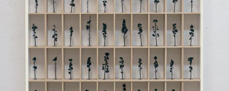 pineforest schematic